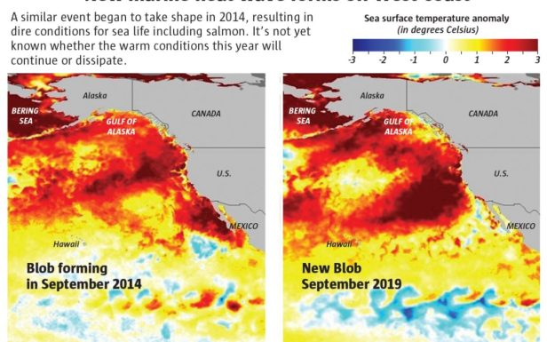 "A ""Strange Anomaly"" Is Taking Place in The Pacific Ocean: Temperatures Have Shot Up To Dangerous Levels Rthrthyrtyhry"