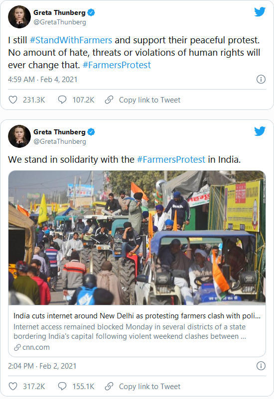 India Considers Criminal Charges Against 'Climate Troll' Greta Thunberg Image-136