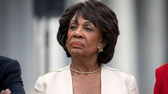 Trump 'Absolutely Should Be Charged with Premeditated Murder' Says Maxine Waters Image-90